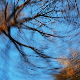 Looking up at trees and the image is distorted to look like the trees are spinning, like having dizziness or vertigo